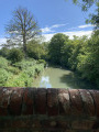 Around Dogmersfield on the Basingstoke Canal (short walk)