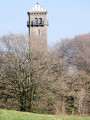 Cranmore Tower through the woods