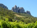 Hike to the Tour des Dentelles de Montmirail
