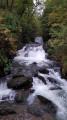 Hoar Oak Water from the bridge