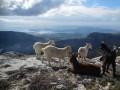 Climbing up and around Mont Caume (804m)