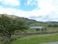 Little Langdale Tarn, Lingmoor behind