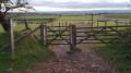 Path leading to Tynings Farm