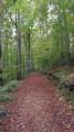 Permissive path Kingscote Wood