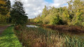 Around ponds in Wanstead Park