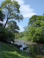 The River Wharfe between Burnsall and Linton